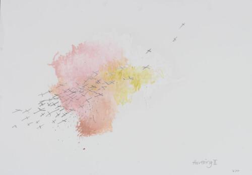 VogelFliegerKreuze